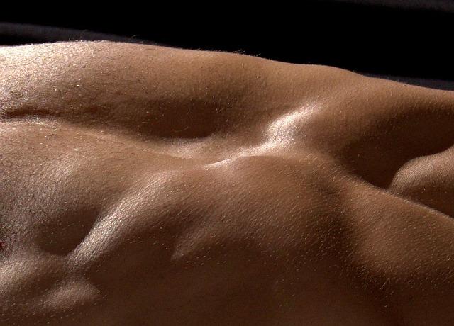 筋肉の構造と筋肥大のメカニズムの話