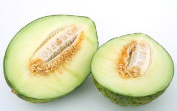 half-melon